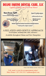Deane Equine Dental